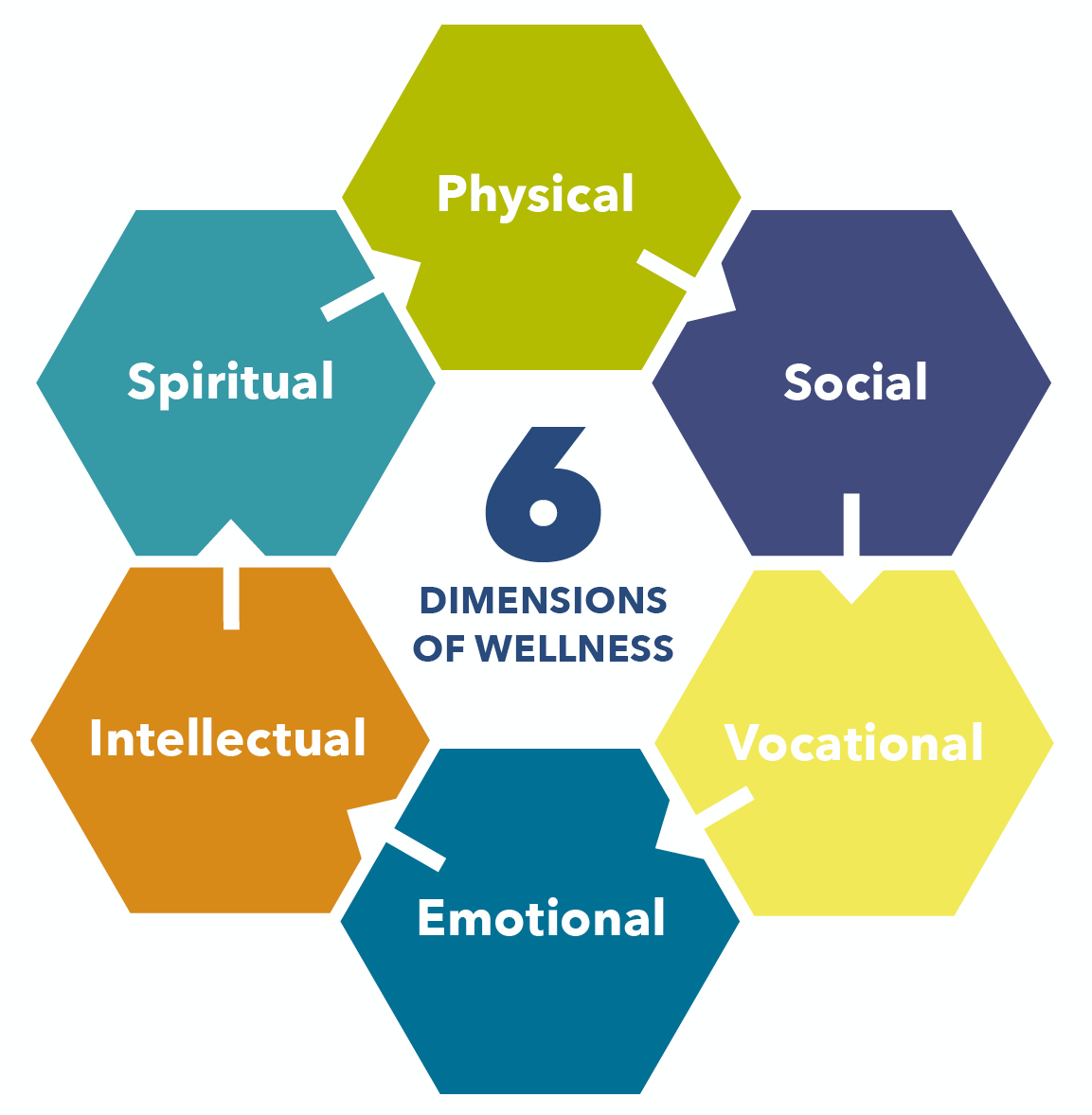 6 Dimentions of Wellness