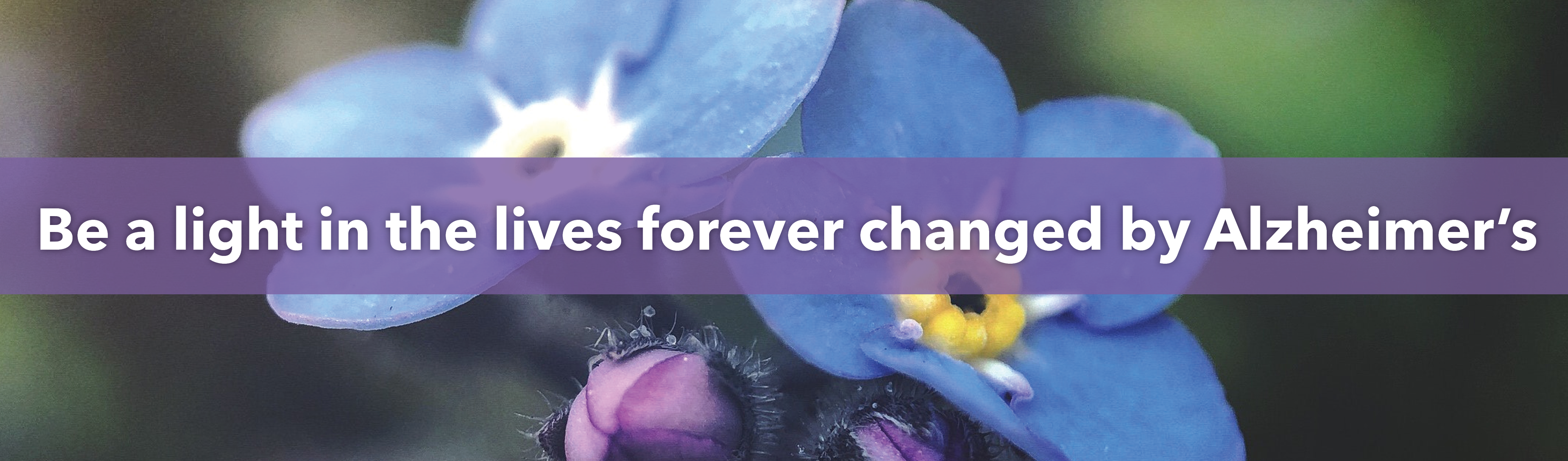 HealthPRO® Heritage commits to Be a light in the lives forever changed by Alzheimer's