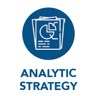 Analytic Strategy