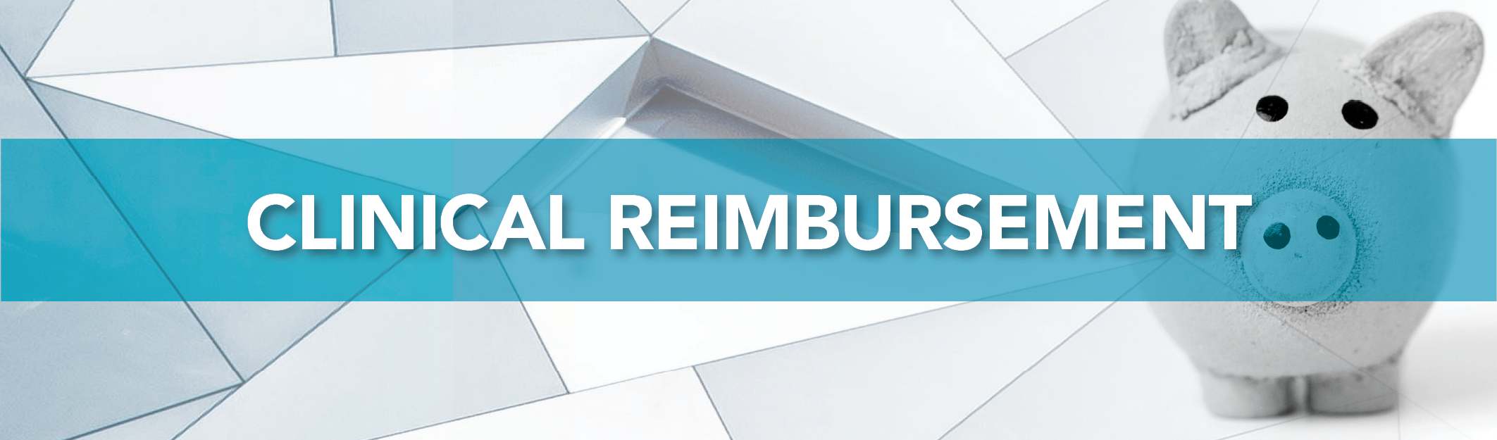 Clinical Reimbursement Header_112320